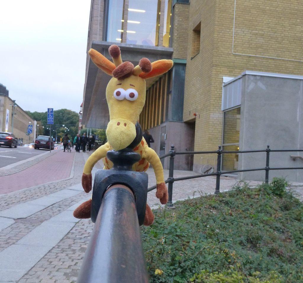 Göteborg Giraffe