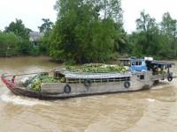 Vietnam Mekong Boot