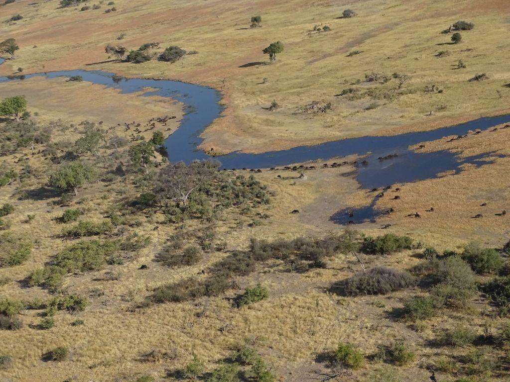Von oben Okavango Delta