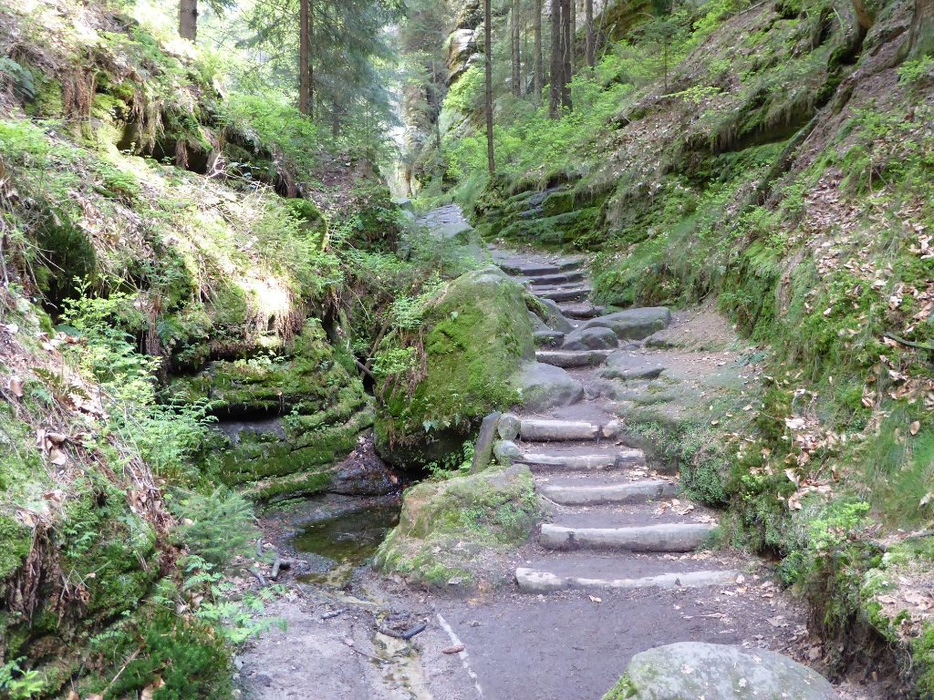 Wanderung Sächsische Schweiz Höllgrund